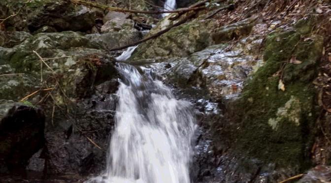 こんな滝があります。